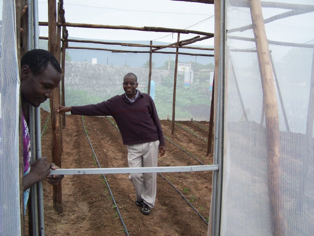 Zimbabwe Green house Projects.